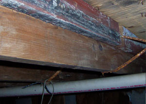 Rotting, decaying wood from mold damage in Andover